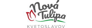 Nová Tulipa